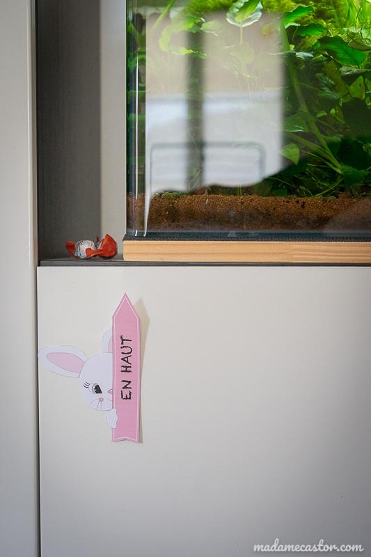 indice lapin avec pancarte à imprimer
